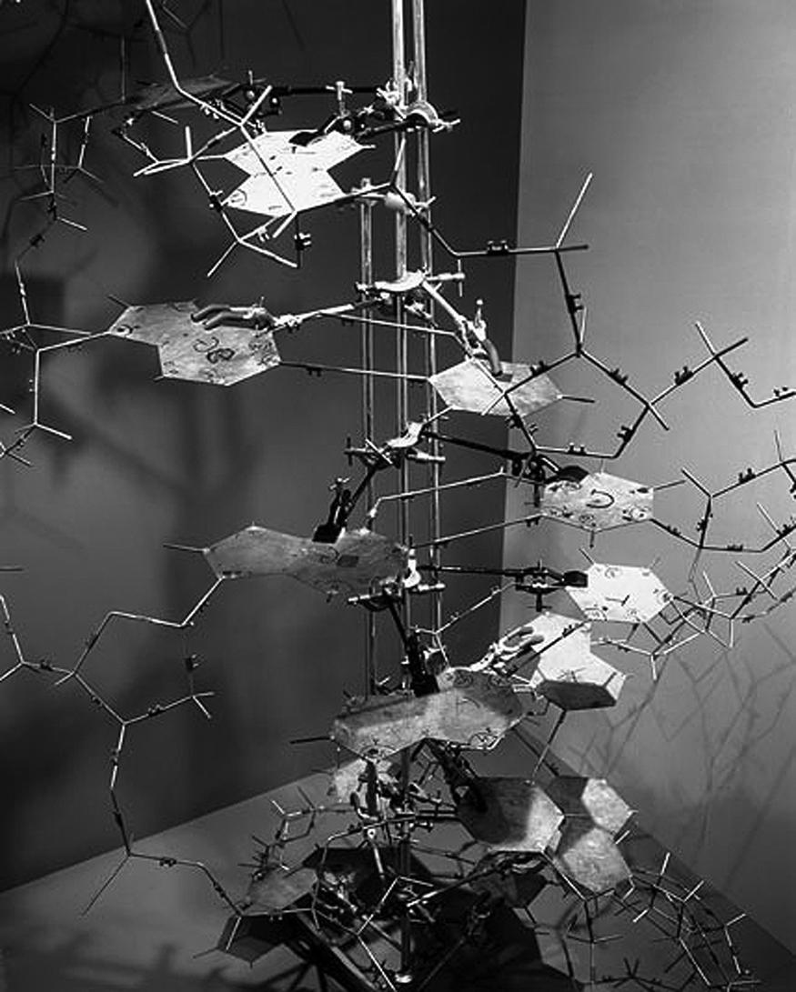 james watson francis crick 1953 paper